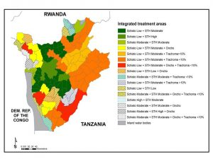 Co-endemicity map in Burundi communes in 2009 for trachoma, onchocerciasis, schistosomiasis and soil transmitted helminth infections. Ndayishimiye  et al.